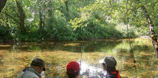 Actividad de pesca en el río Pigüeña (Belmonte de Miranda)