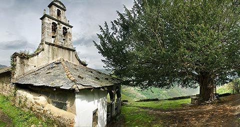 Ermita y Tejo Santa Coloma (Allande)