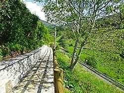 Senda en el Camino de Santiago (Pola de Allande)