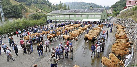 Feria del Ganado de Riosa