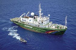 El buque Esperanza de Greenpeace llegó al puerto de Gijón el 7 de septiembre