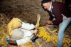 Imagen de archivo del Festival del Esfoyón y Amagüestu celebrado en Tineo