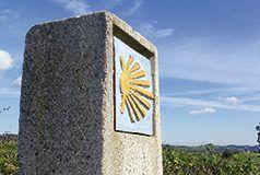Camino de Santiago. Pravia