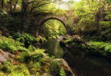 Puente sobre el río Polea