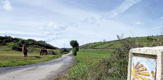 Camino de Santiago a su paso por Carreño