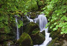 Cascada del Río de La Peña Piloneta