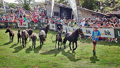 Fiesta del Asturcón en la Majada de Espineres (Piloña)