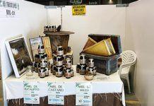 Feria de la Miel de Boal