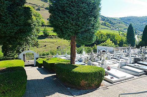 Cementerio de Arayón, Cangas del Narcea