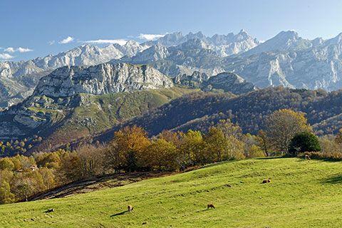 Editorial 295. Picos de Europa desde Ponga