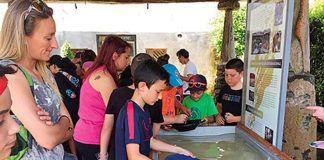 Actividad de bateo en el Museo del Oro, Navelgas (Tineo)