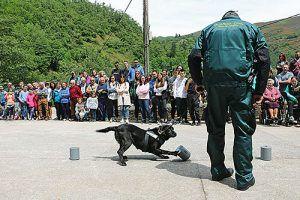 """Jornada """"El perro y el hombre"""", el pasado 8 de junio en Moal (Cangas del Narcea)"""