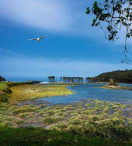 Vista de La Poza de Navia, enclave medioambiental incluido en la Red Natura