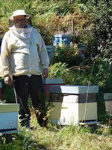 Julio Fernández, apicultor de Boal