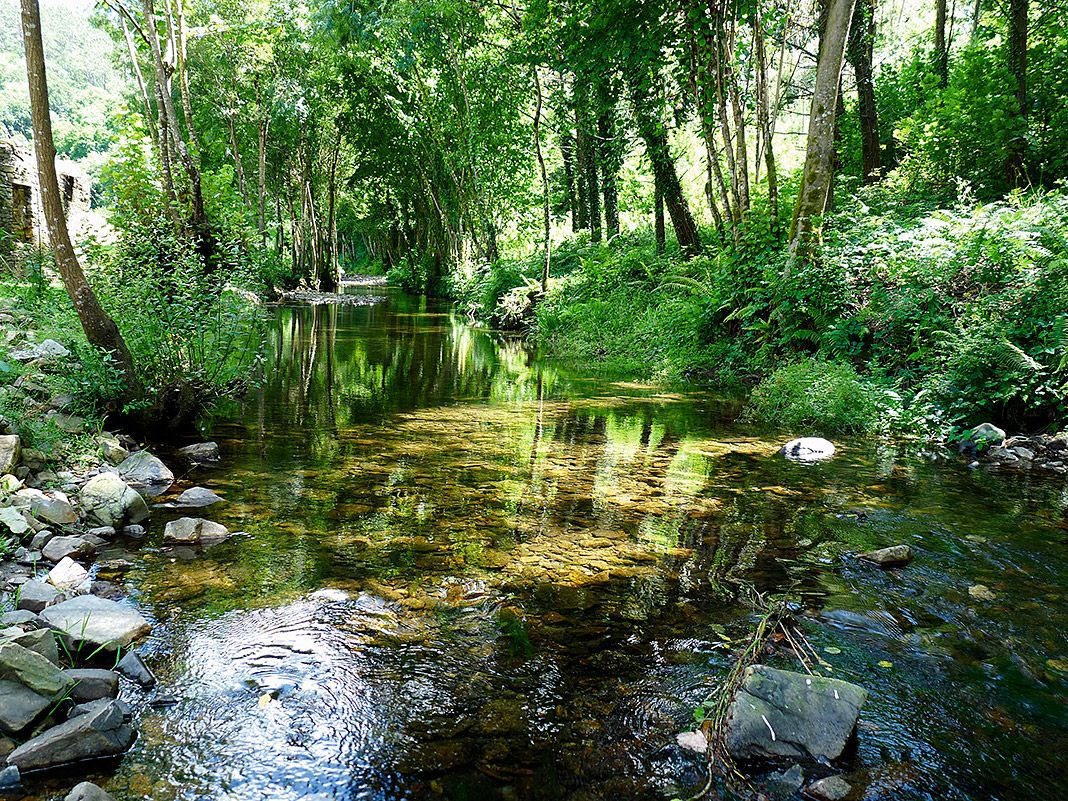Río Mazo y senda verde en Boimuro (El Franco)
