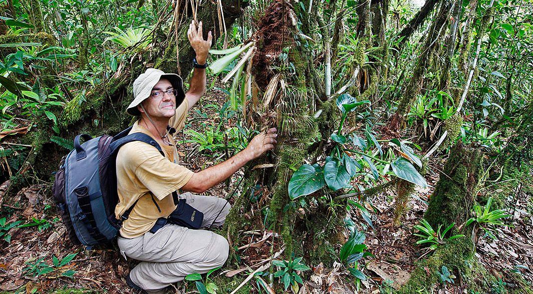 Díaz-Formentí en Copalinga, Podocarpus. Ecuador