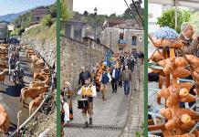 Feria Concurso de Ganado, Procesión de la Virgen del Rosario y Puya´l Ramu (Riosa)