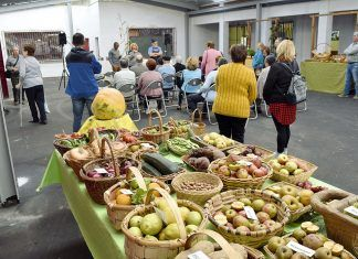Exposición y mercado de la Cosecha de Otoño en Riosa