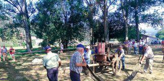 Vecinos de San Tirso separando el grano de la paja en la Fiesta de la Malla del Trigo