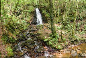 Cascada de Nonaya en e concejo de Salas