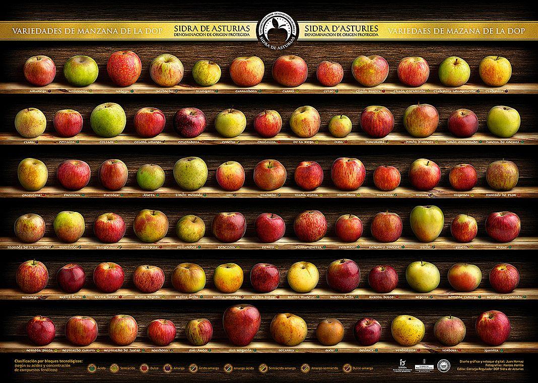 Variedades de manzana de la DOP