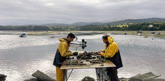 Eduardo y Manolo en el cultivo de ostras de Acueo, en Castropol