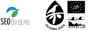 SEO BirdLife / Olivares Vivos