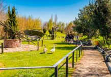 Parque de la Vida (Valdés)