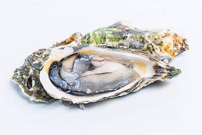 https://fusionasturias.com/otras-secciones/recetas/salmorejo-con-anguila-ahumada-hinojo-de-mar-y-ostra.htm Salmorejo con anguila ahumada, hinojo de mar y ostra