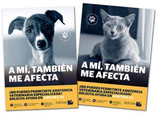 Fondo Social AniCura, ayudas al cuidado de las mascotas