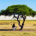 El árbol para pensar, sección de opinión en Fusión Asturias