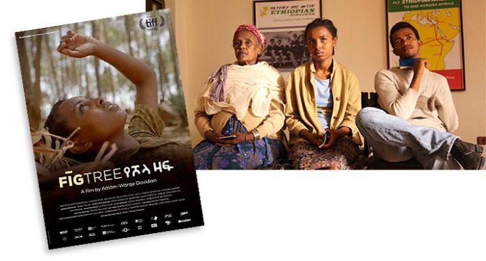 Carátula y fotograma de la película africana Fig Tree (La higuera)