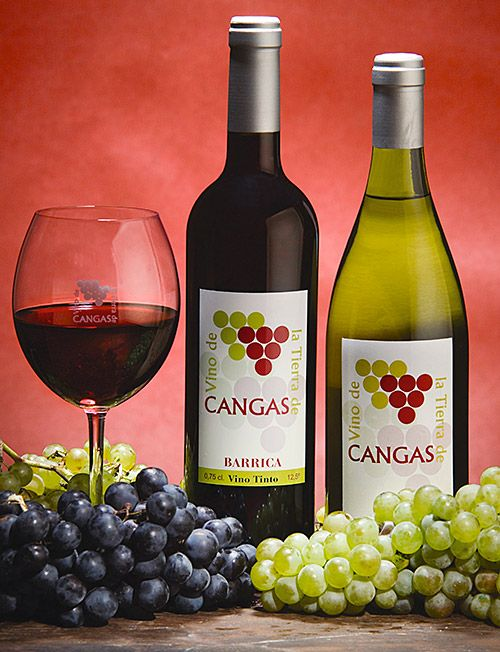 Vino de Cangas (Asturias)