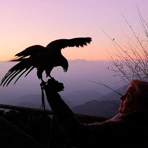 Ana Inmaculada con 'Aria', un águila de Harris