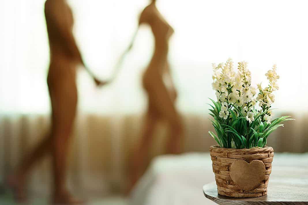 Silueta de pareja desnuda