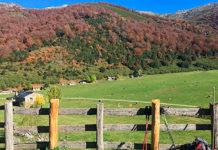 Vega de Brañagallones. Caso, Asturias