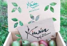 Minikiwis producidos en la granja de Cristina Secades, de KiwinBio