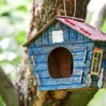 Haz tus propias cajas nido con los talleres de Biodevas